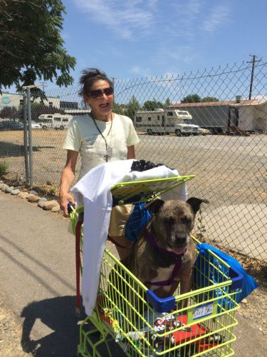 An image of a homeless woman and dog in Cart