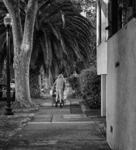 An image of an older woman with a walker going down the street